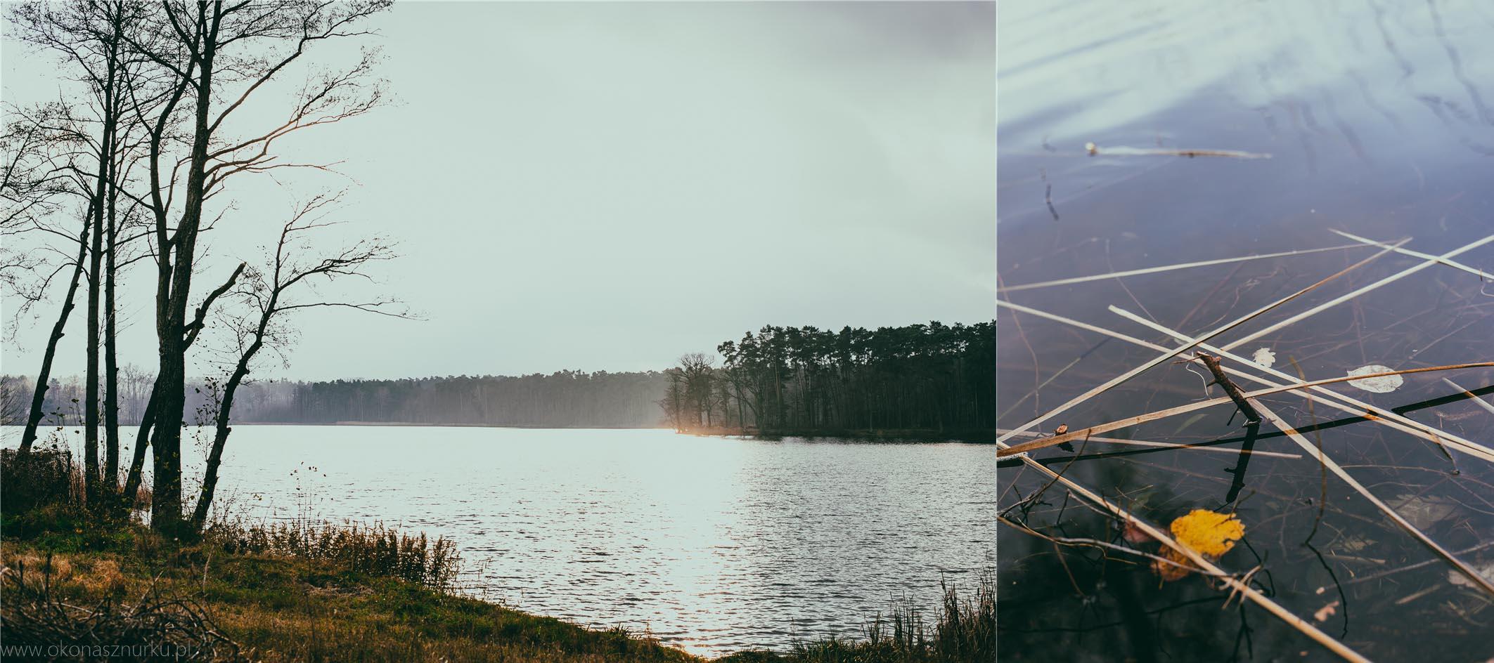 sesja-wizerunkowa-wielkopolska-okonasznurku