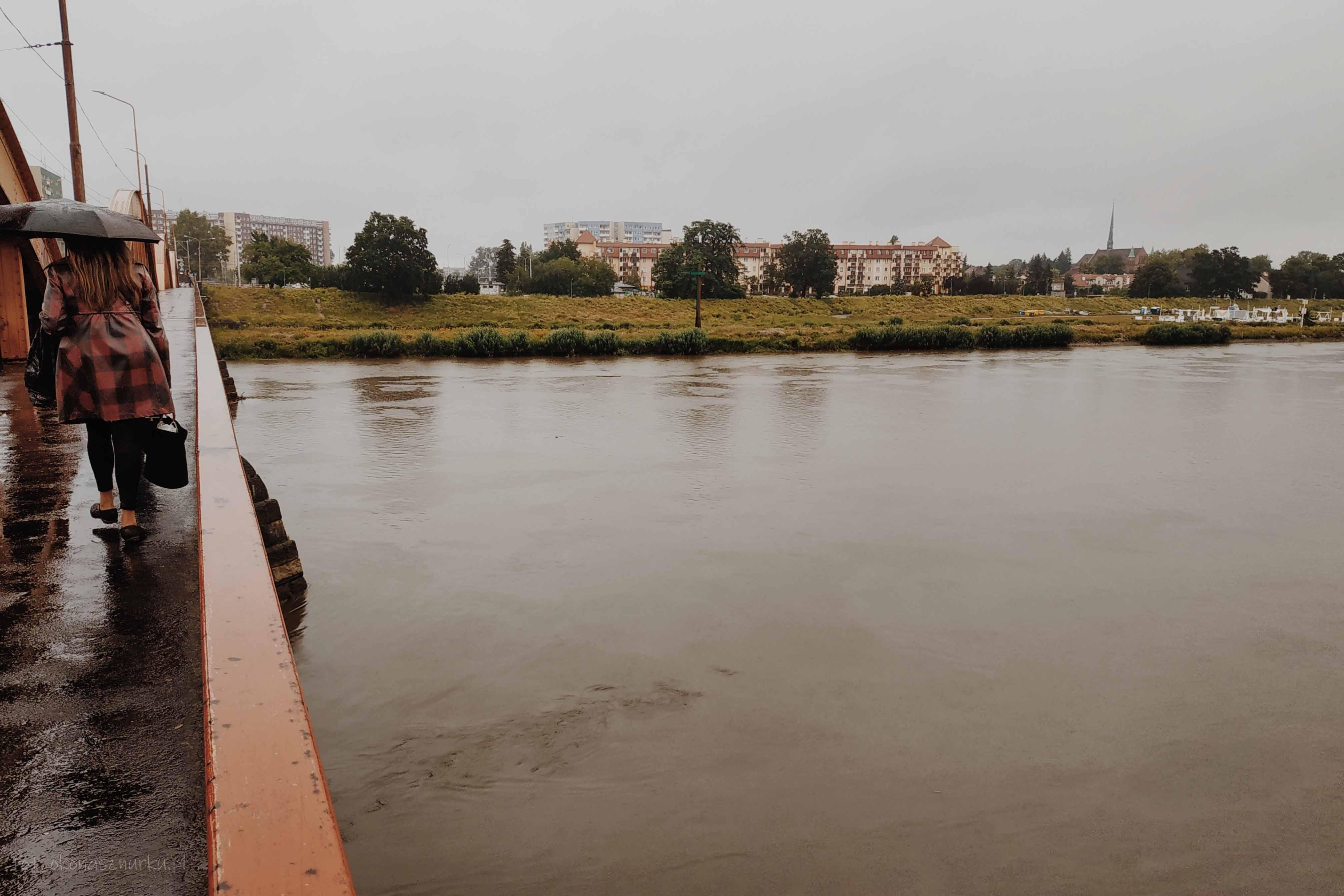 powodz-odra-wroclaw-2020-okonasznurku (14)