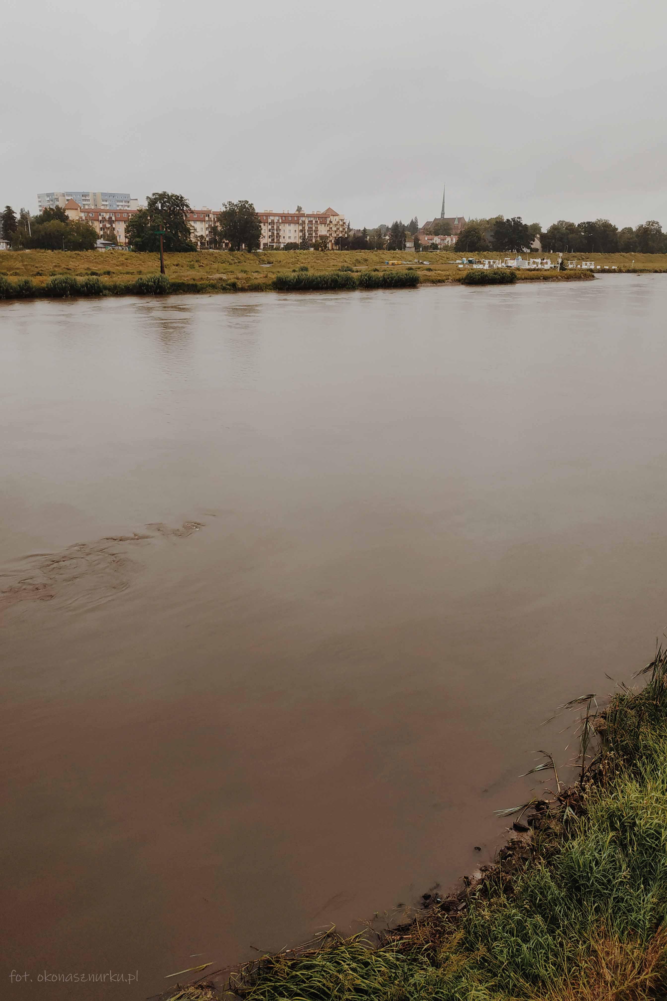 powodz-odra-wroclaw-2020-okonasznurku (16)